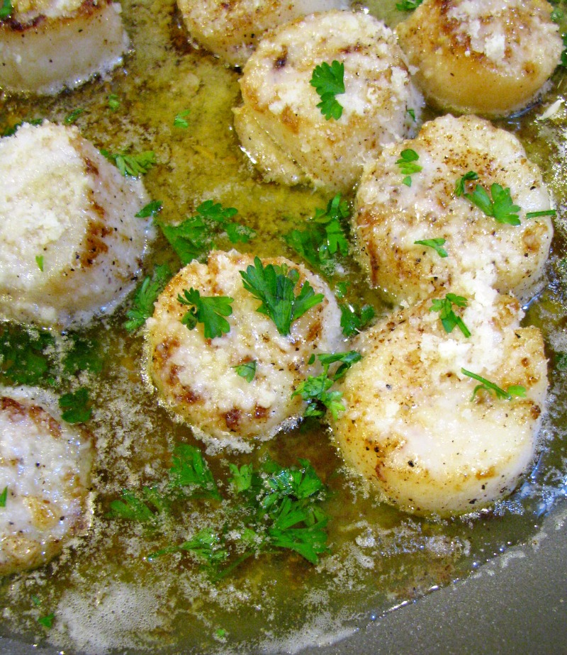 Melt in your mouth Browned Butter Garlic Parmesan Scallops, quick to make, fancy enough for a special occasion yet simple enough for a weeknight dinner.