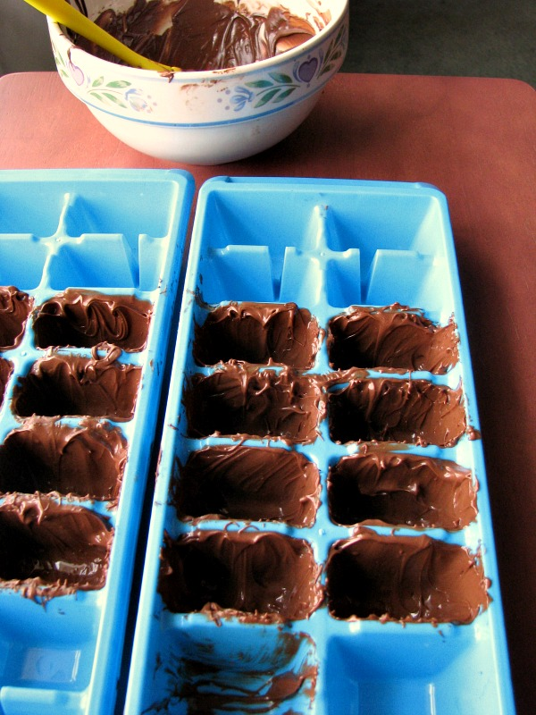 Chocolate Brushed Ice Cube Tray Holes