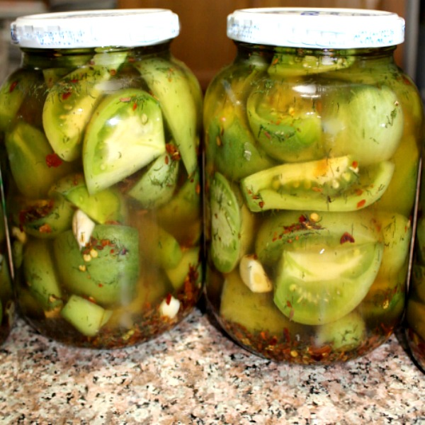 photo of prepared pickled green tomatoes in two jars